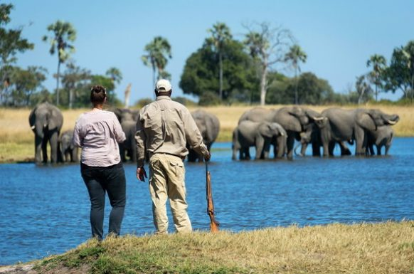 Hwange National Park Zimbabwe Safari Tours Package