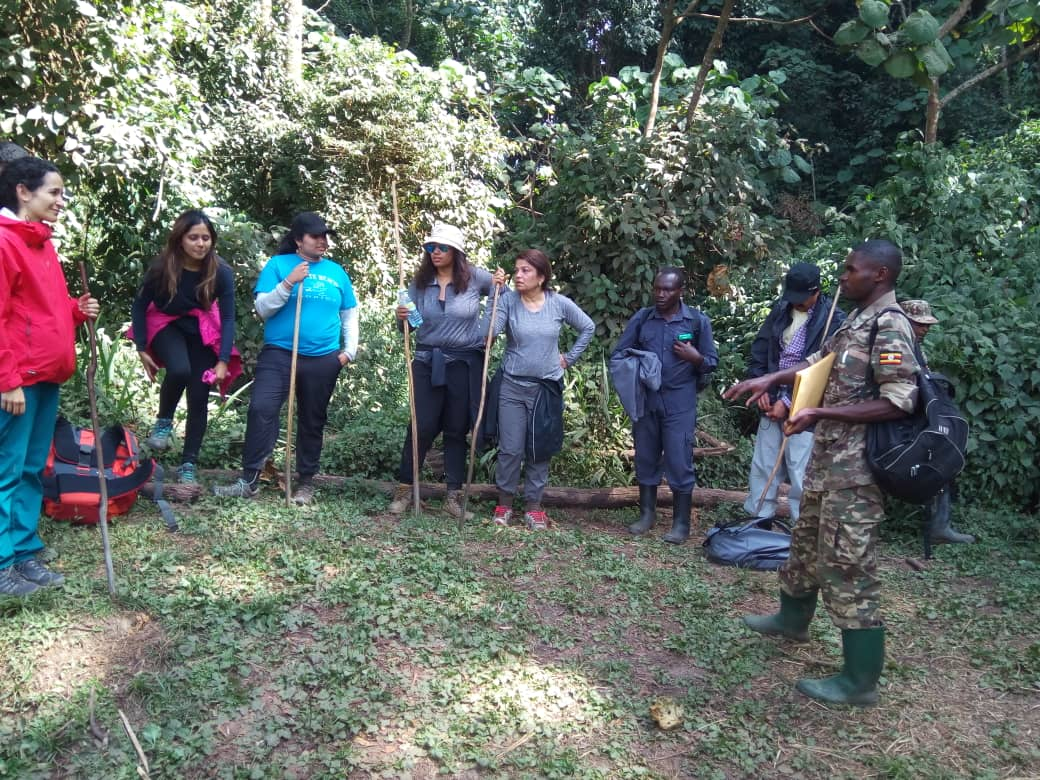 6 Days Uganda gorilla safari Bwindi, Queen Elizabeth Wildlife tour & Lake Bunyonyi tour