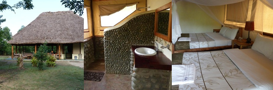 Ishasha Jungle Lodge - accommodation in queen elizabeth np