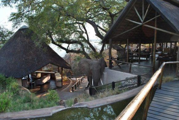Kasaka National Park Zambia Safari Tours Package