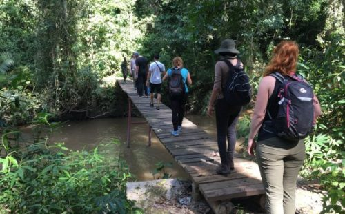 Kyambura Game Reserve Nature walks and forest walks