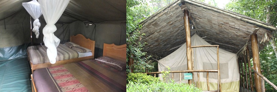 Lake Kitandara Bwindi Camp - accommodation in bwindi np