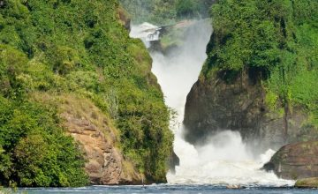 Murchison Falls & Kibale Uganda Tour - 5 days