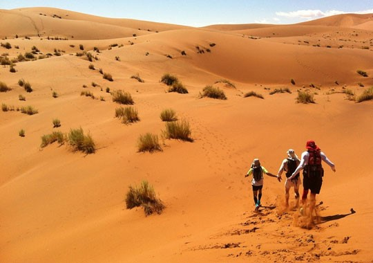 Namib Desert Namibia Safari Tours Package