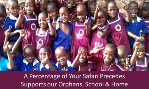 Prime Safaris Orphange