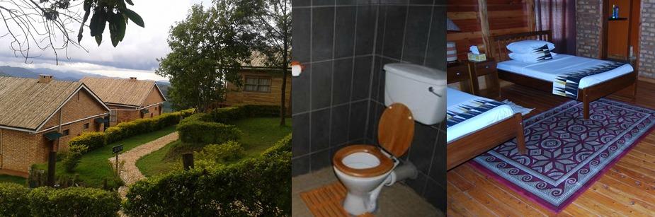 Ruhija Gorilla Safari Lodge - accommodation in bwindi np