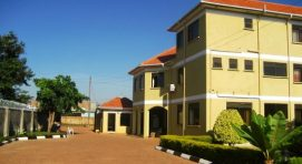 The dove's nest hotel