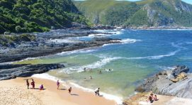 Tsitsikamma National Park South Africa Safari Tours