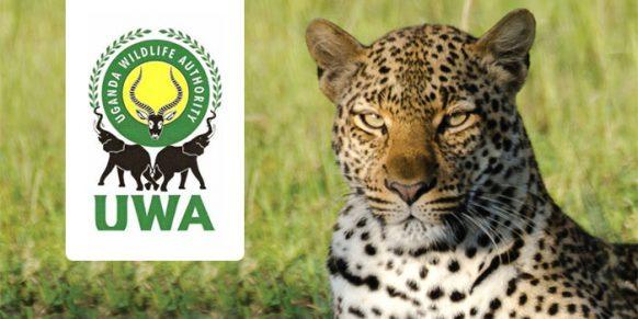 Uganda Wildlife Authority Gets New Board Members