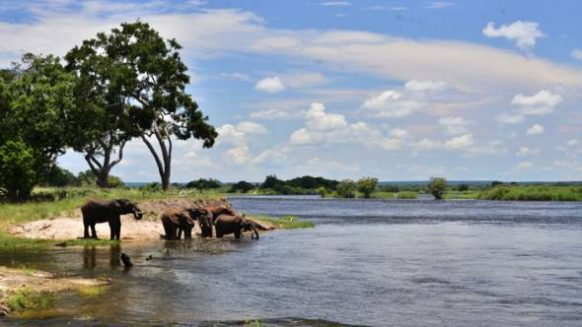Zambezi River Zambia Safari Tours Package