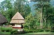 buhoma community rest camp -bwindi