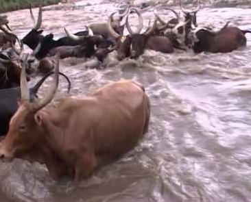flooding in kasese - uganda