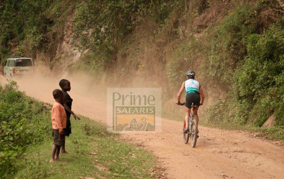 group tour prime safaris