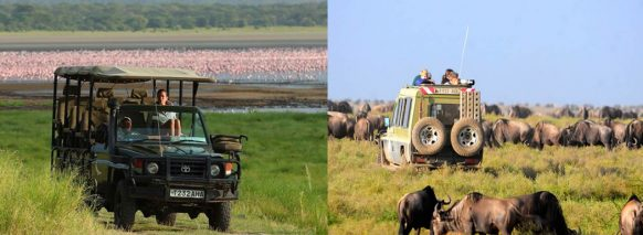 gmaedrive-lakemanyara-national-park safari tanzania safari holiday tour