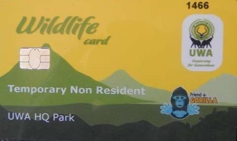 gorilla permit-uganda