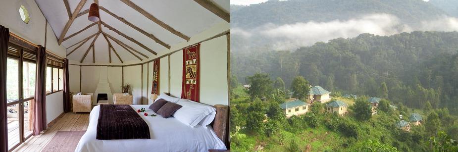 gorilla safari lodge - luxury accommodation in bwindi np
