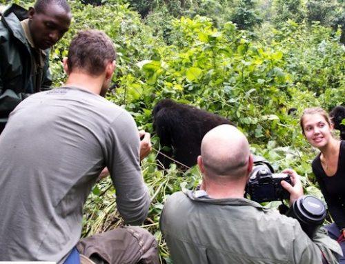 4 Days Scheduled Group Uganda Gorilla & Wildlife Safari from Kigali