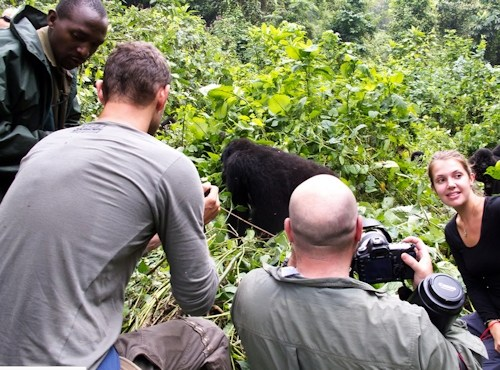 Mgahinga Gorilla National Park Uganda came world's 3rd best must photograph travel destination