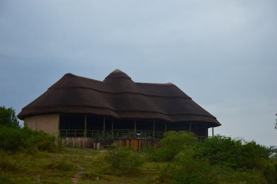 kasenyi-safari-camp-uganda-safaris-uganda-safari-tours