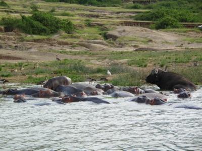 kazinga_channel uganda safaris