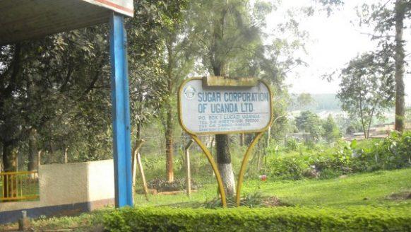 lugazi sugar uganda safari