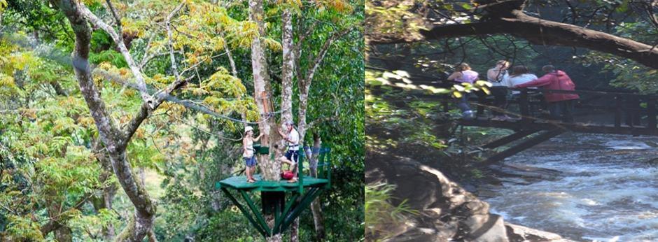 mabira-forest