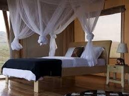 marafiki lodge-uganda safari