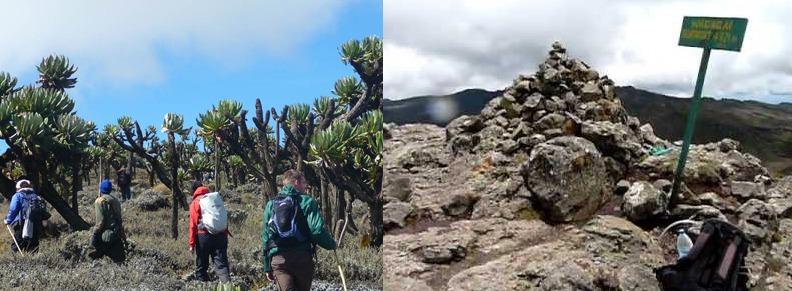 mount-elgon-climbing