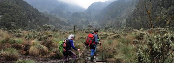 mountain-rwenzori-magheritah-peak-climbing