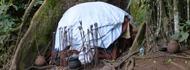 nakiyima-tree-buganda-cultural-tour