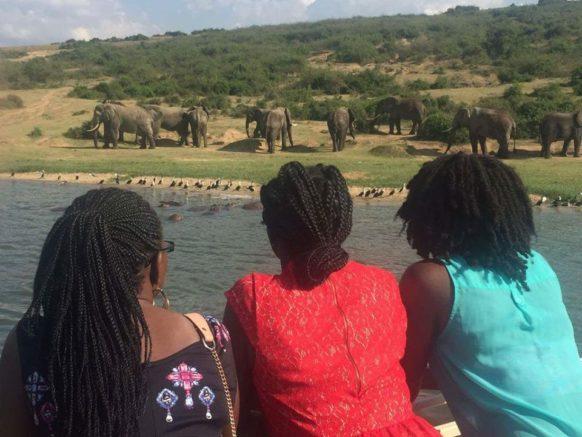 10 days gorilla trekking safari in Uganda & Rwanda wildlife tour