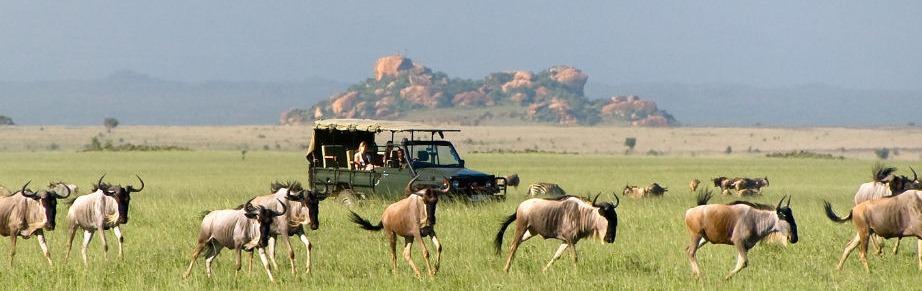 sambaru-national-park-uganda