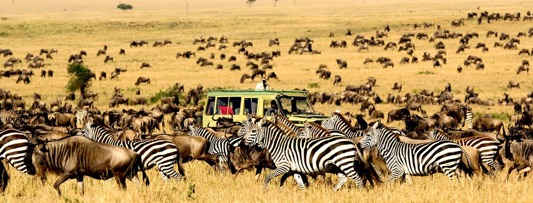 5 Days Tanzania Safari Tour, 5 Day Tanzania Safari
