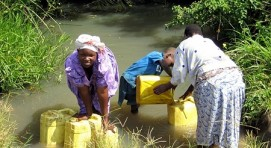 Fetching swamp water