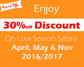 uganda-safari-discounted-safaris