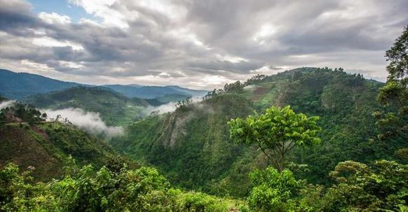 Weather in Uganda, Climate in Uganda, Uganda Climate and Weather.