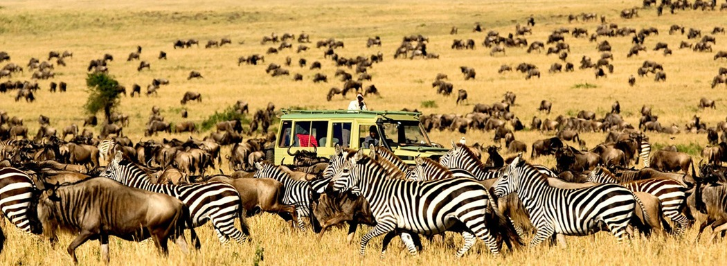 Combined East Africa Safari Holiday Tours In Kenya