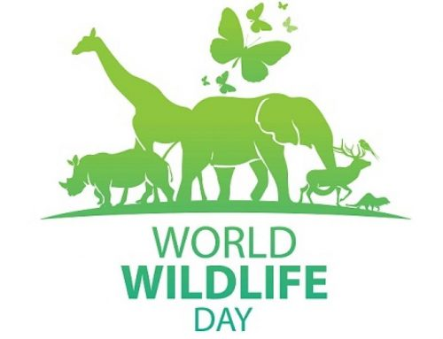 Uganda to Celebrate the UN World Wildlife Day -Tuesday 3rd March 2020