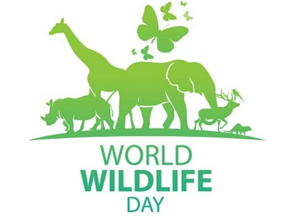 UN World Wildlife Day